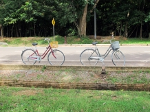 our two old bikes