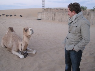 talking with camels