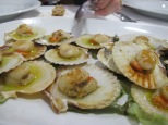 typical seafood of Galicia